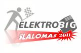 Elektrobig_slalomas